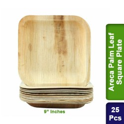 Food Lunch Dinner Plates-Eco Friendly Areca Palm Leaf-9 inch Square-25pcs