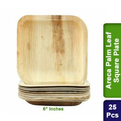 Food Lunch Plates-Eco Friendly Areca Palm Leaf-6 inch Square-25pcs