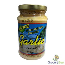 Garlic Paste Mini