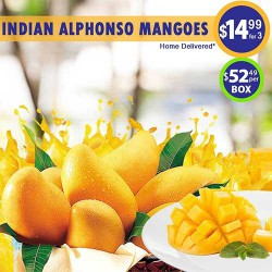 Indian Alphonso Mangoes Tray