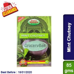Mint Chutney Ready Chutney Mix Curry Masters - Clearance Sale
