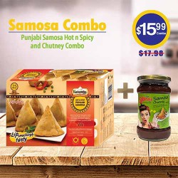 Punjabi Samosa Hot n Spicy and Chutney Combo
