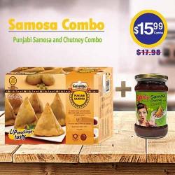 Punjabi Samosa and Chutney Combo